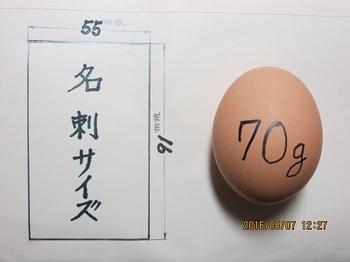 名刺と鶏卵.jpg